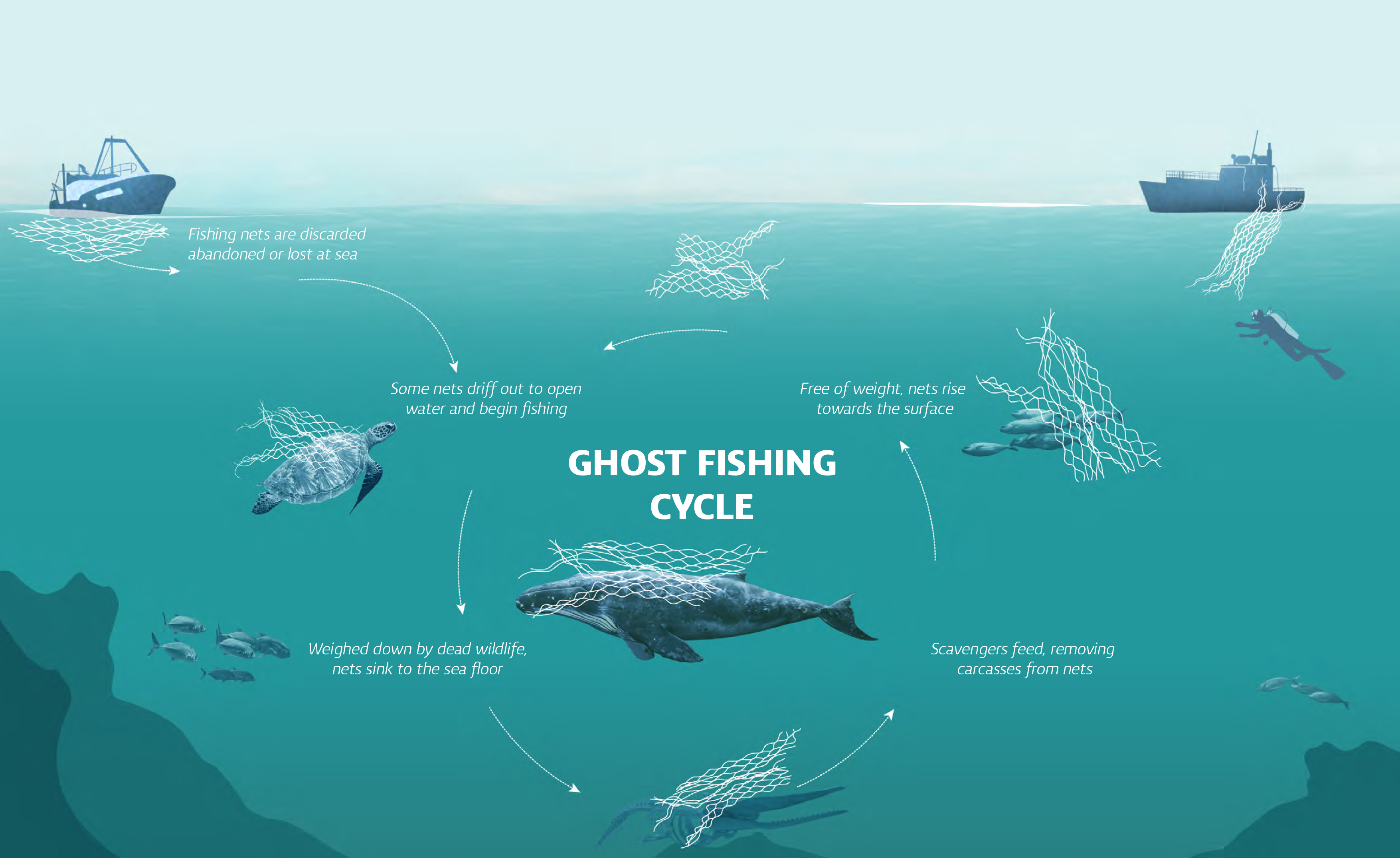 ghost fishing nets fishes trolleys carts araven